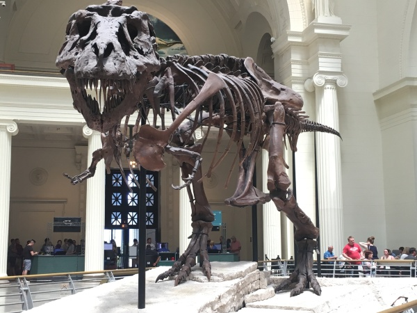 Field_Museum_Sue_Chicago