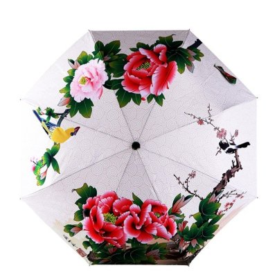 early_spring_umbrella_fancy